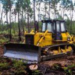 Conaf culmina labores de cortafuegos preventivos en Los Ríos