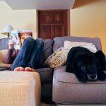 Cómo crear un espacio en casa para tu perro
