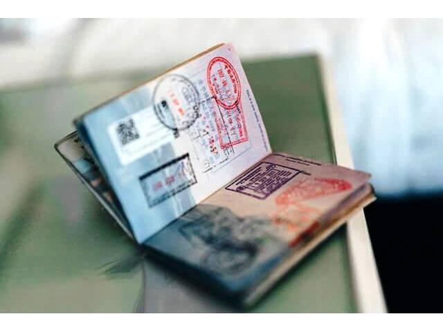 visa de responsabilidad democrática